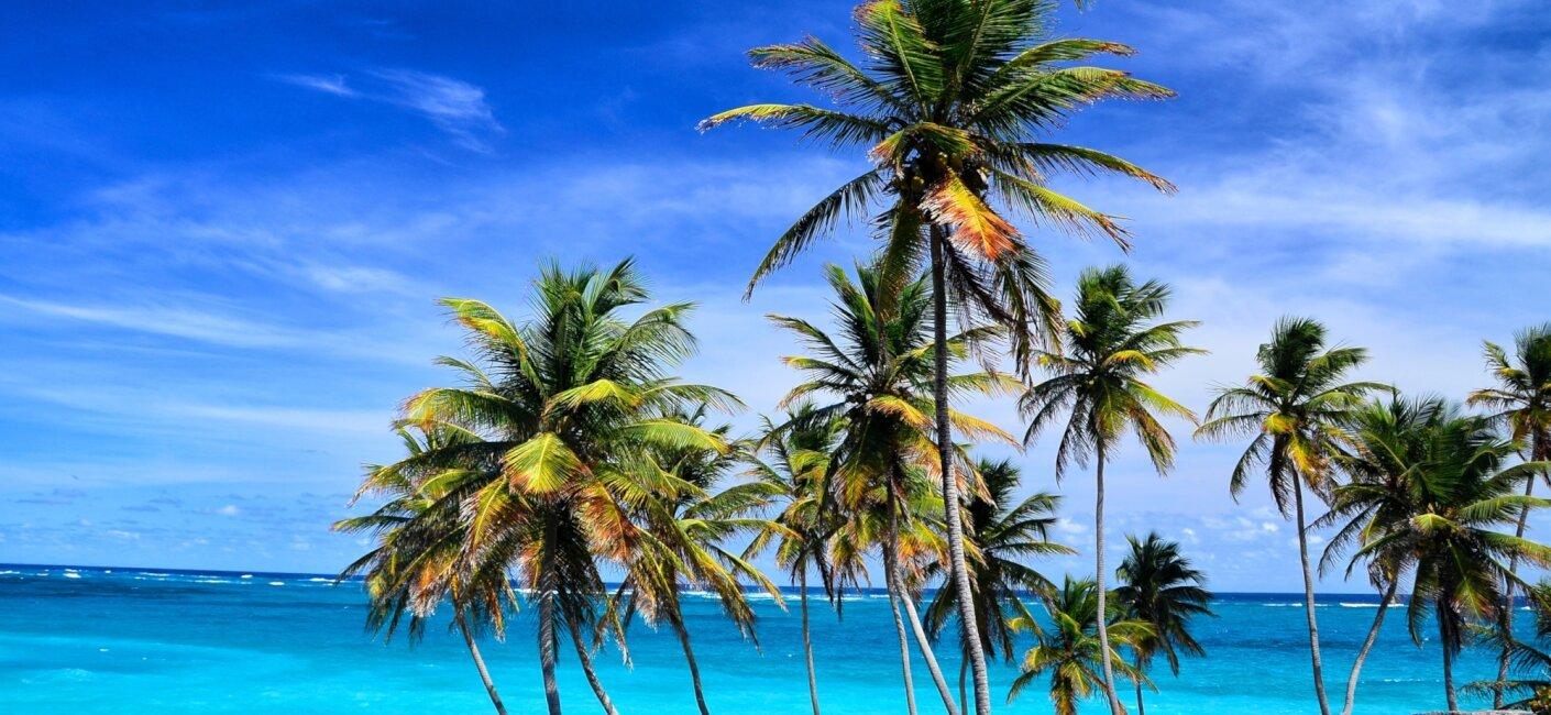 Barbados photo 2