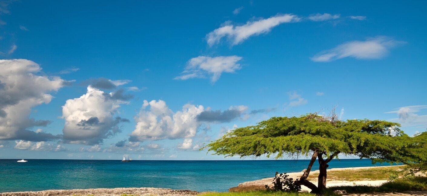 Aruba photo 2