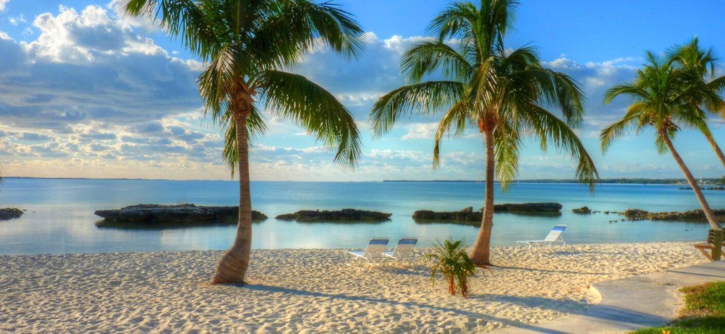 Aruba photo 3