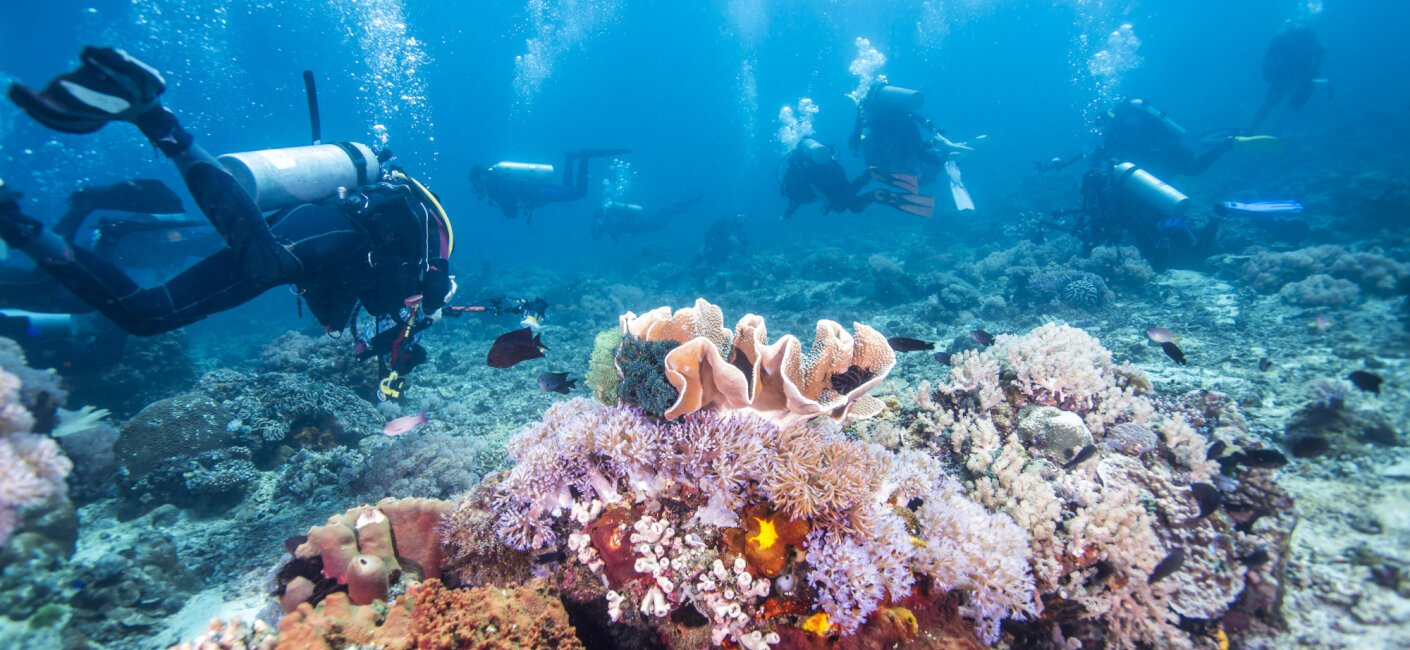 Great Barrier Reef photo 1