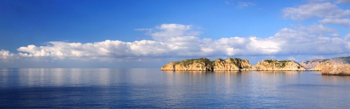 Palma photo 2
