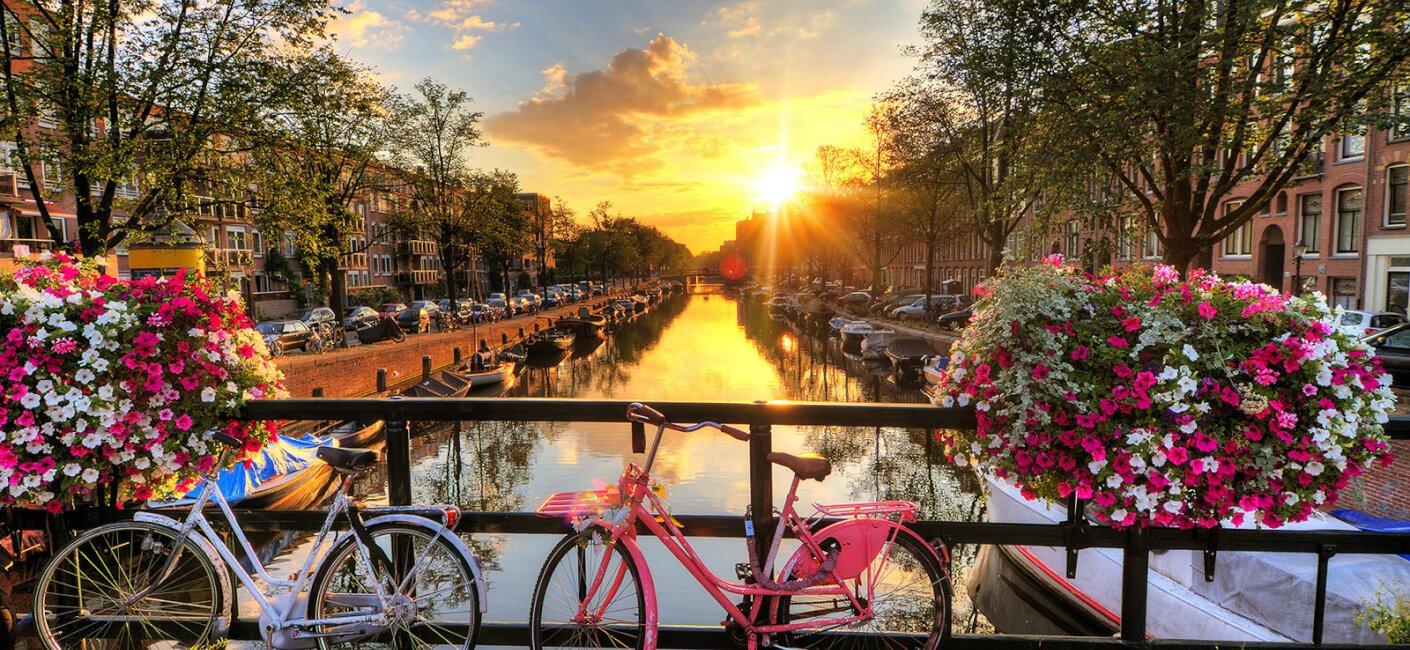 Holland photo 1